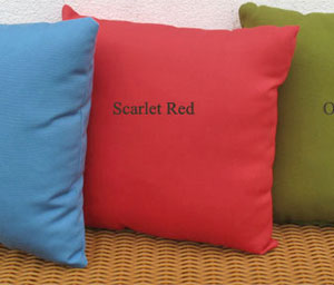 Replacement Throw Pillows