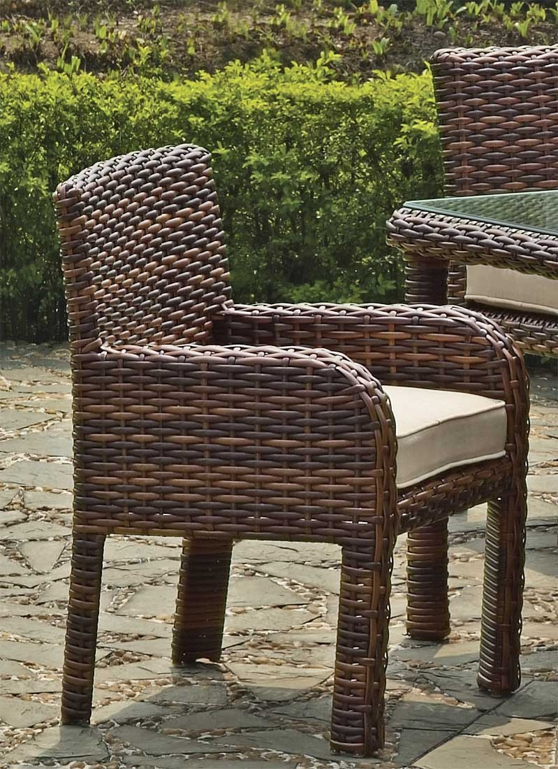 St croix all weather outdoor resin wicker dining arm chair tobacco