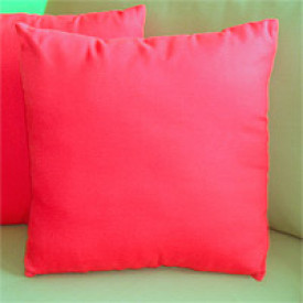 Sunbrella 15 Indoor/Outdoor Throw Pillow