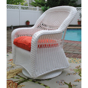 Belair Resin Swivel Glider Chairs in 5 Colors and 50 Fabrics